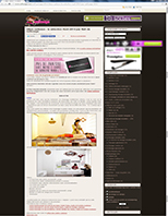 111-2014-12-20_NELISSAGE_Article Web SPA_Miniature