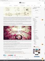 151-2016-11-16_THE CELINETTE_Article_Web SPA_Miniature